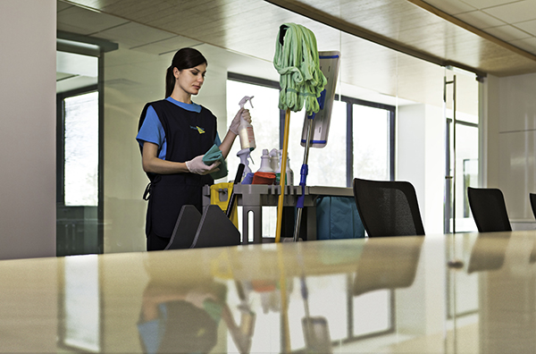 Green Cleaning Products – Newark, NJ and Essex County