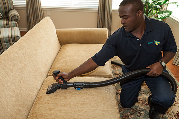 Upholstery Cleaning Services for Newark, NJ and Essex County