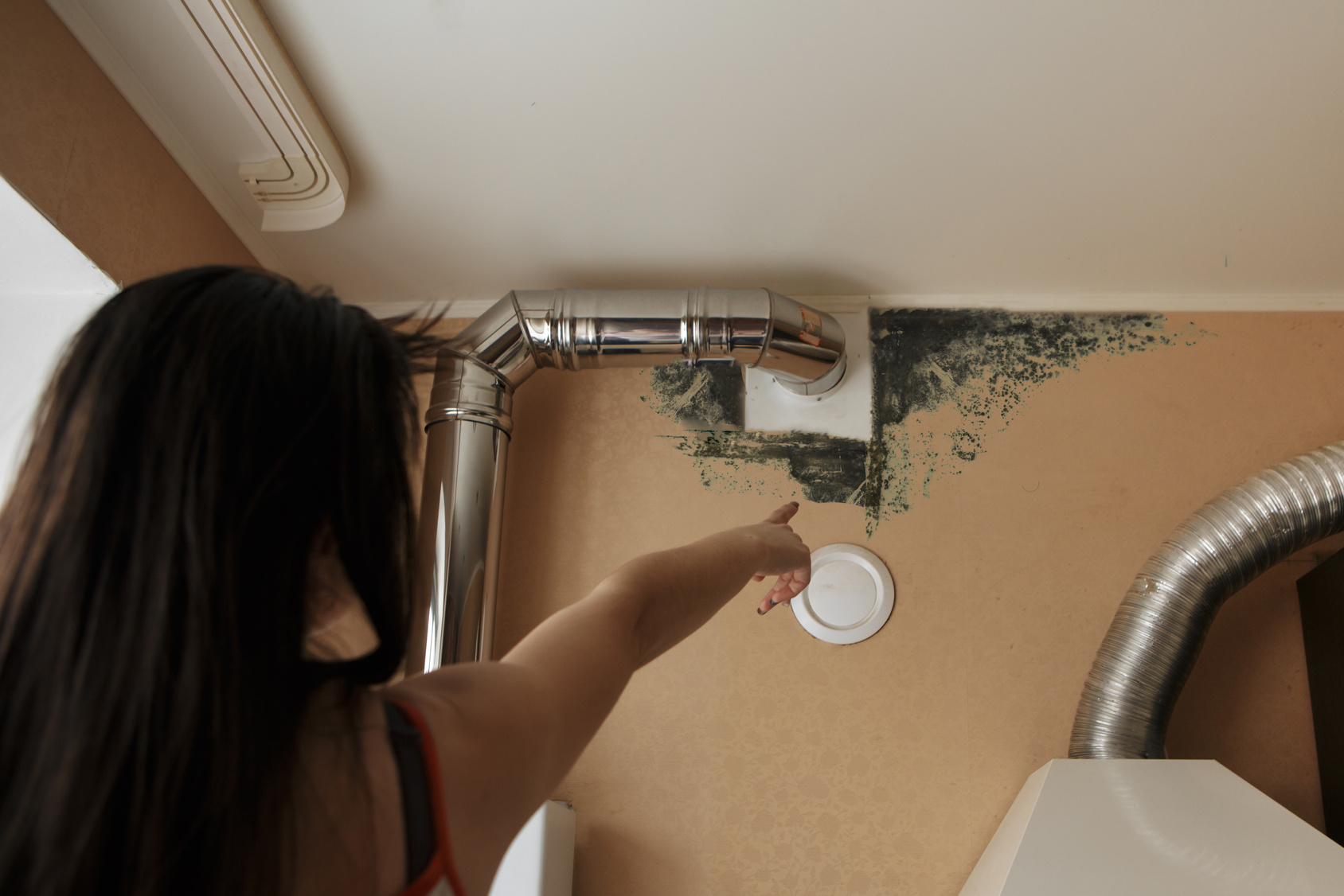 How Long Does It Take for Mold to Grow? | ServiceMaster in ...